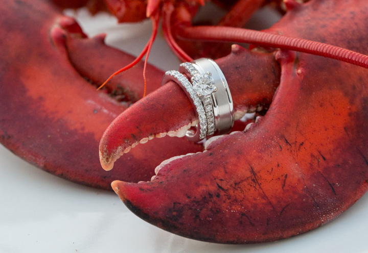 Lobster with rings - Engagement rings are displayed on a lobster claw at this Maine wedding.